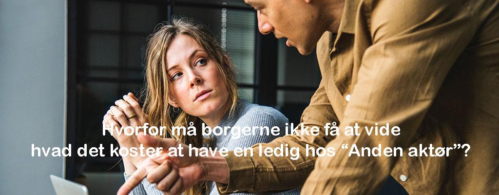 Mentorudgift i Holbæk 2017